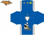 Hockey Pens Jersey (Kids)